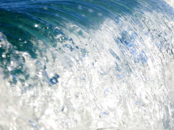wave_curve