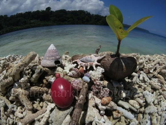 island_treasures