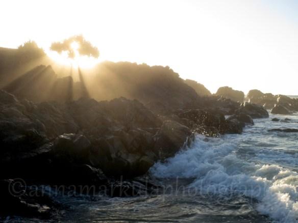sunbeams_and_surf