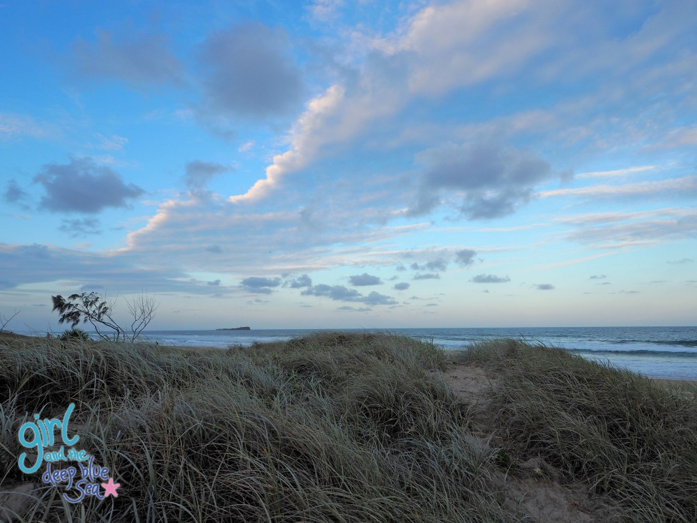 beach dunes landscape Mudjimba Beach