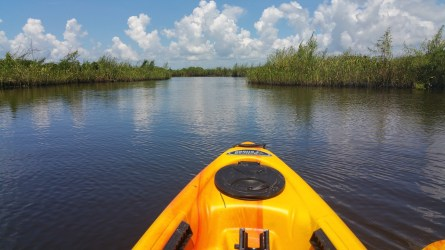 Kayaking is one of the best things to do from home while social distancing.