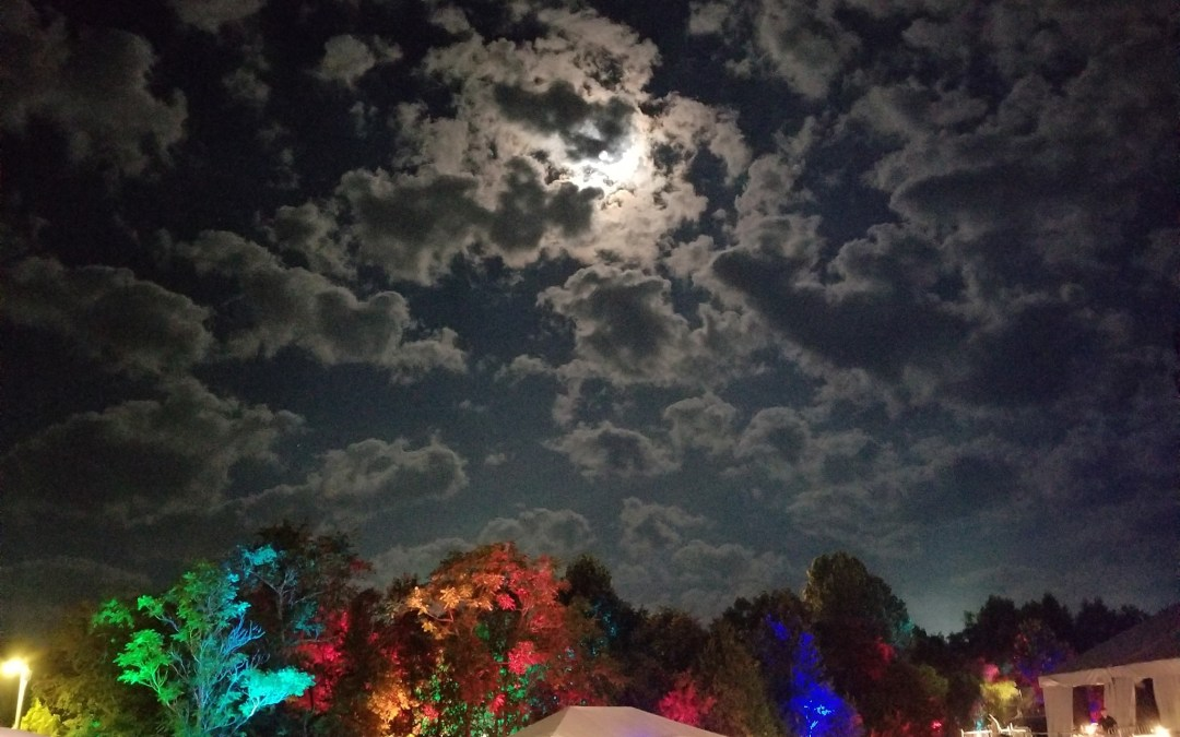 Episode 158: Road Trip Mojo Music – Festivals Explored