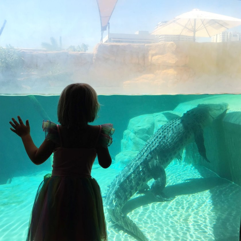 A young girl and a 4m Crocodile
