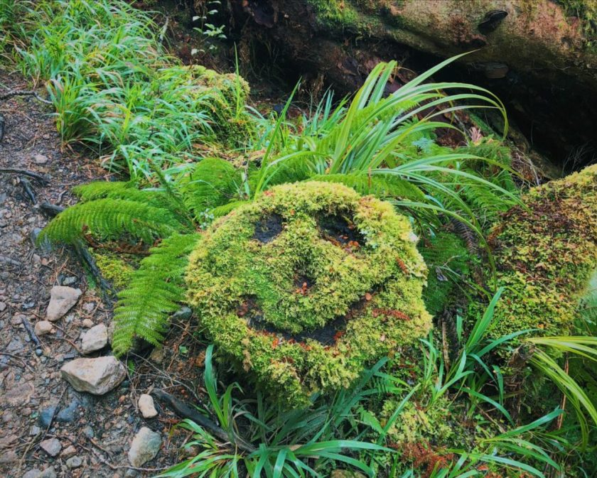 An all-natural smiley face!