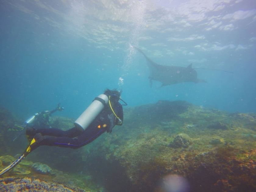 Diving at Manta Point, Nusa Penida