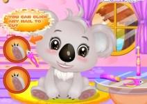 Baby Koala Salon