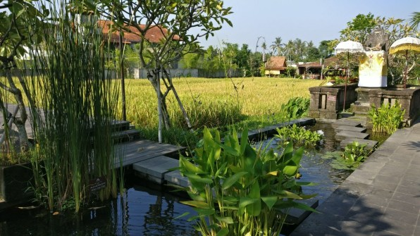Bali Honeymoon Alaya Ubud hotel