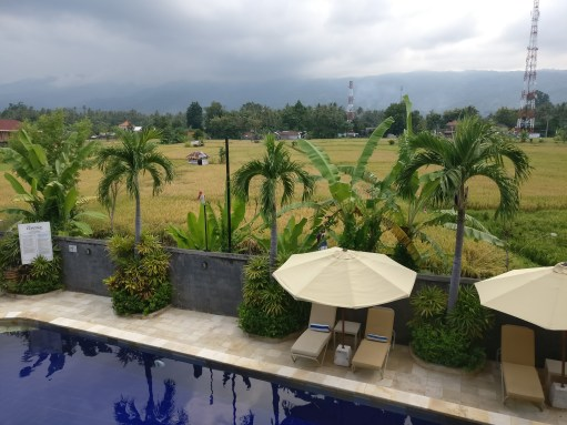 Bali Honeymoon The Lovina pool & paddy fields