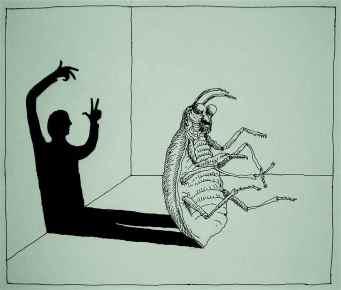 Kafka - Metamorphosis