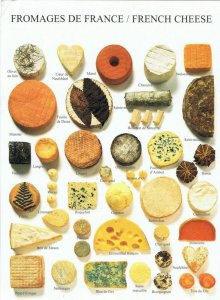 Friday Fun Facts Challenge - Cheese