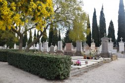 Mimosa Photo Gallery - Cemetery