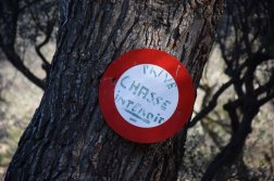 Provence's Côte Bleue - no hunting!
