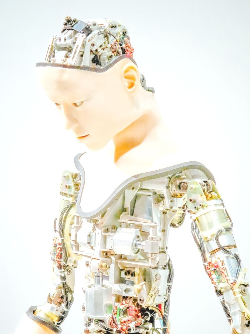 An Interview With Sophie Hanson: The Robot Granted Citizenship
