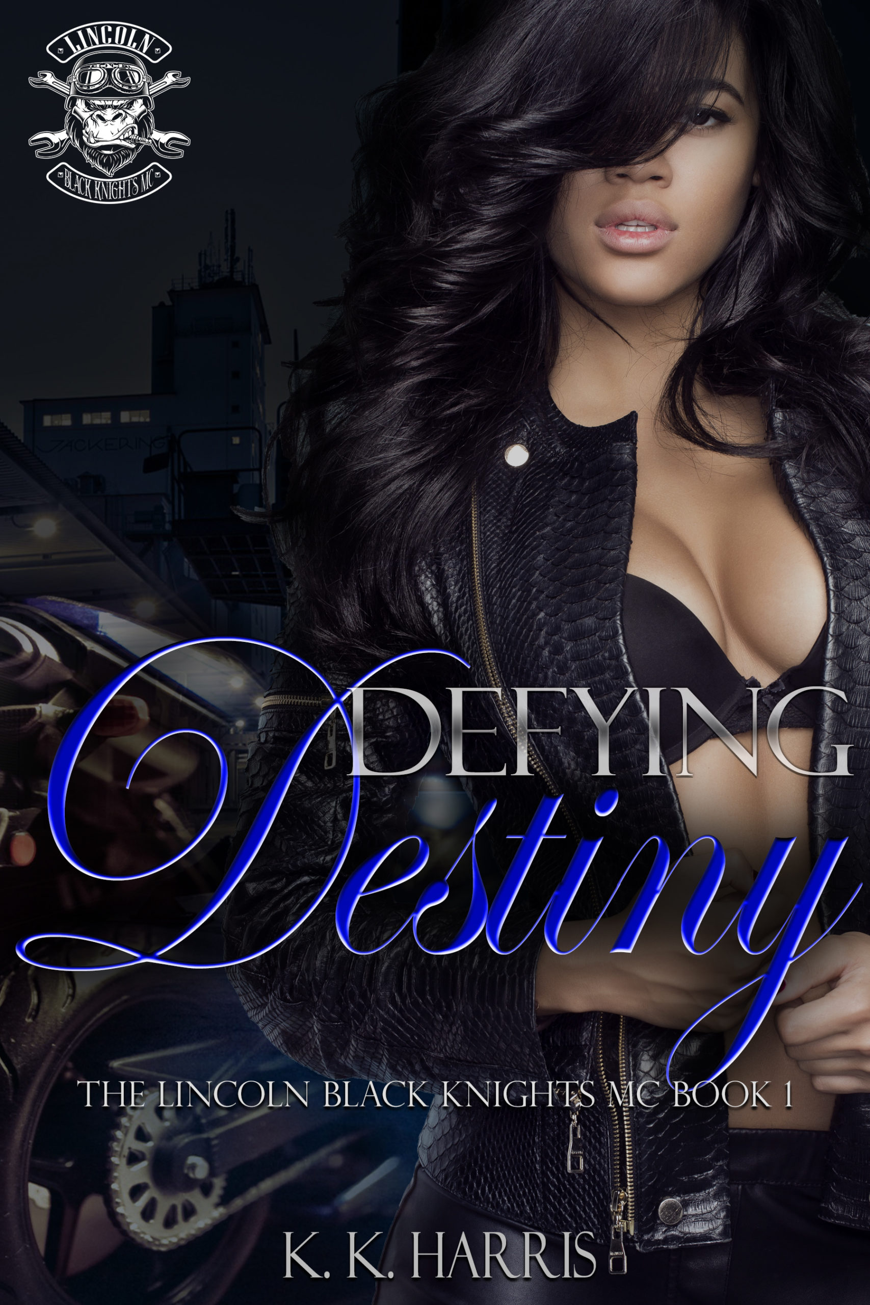Book Spotlight Defying Destiny Lincoln Black Knights Mc
