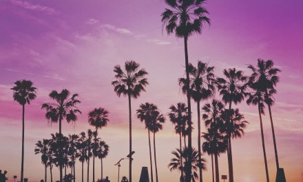 Fun Things You Must Do In Los Angeles