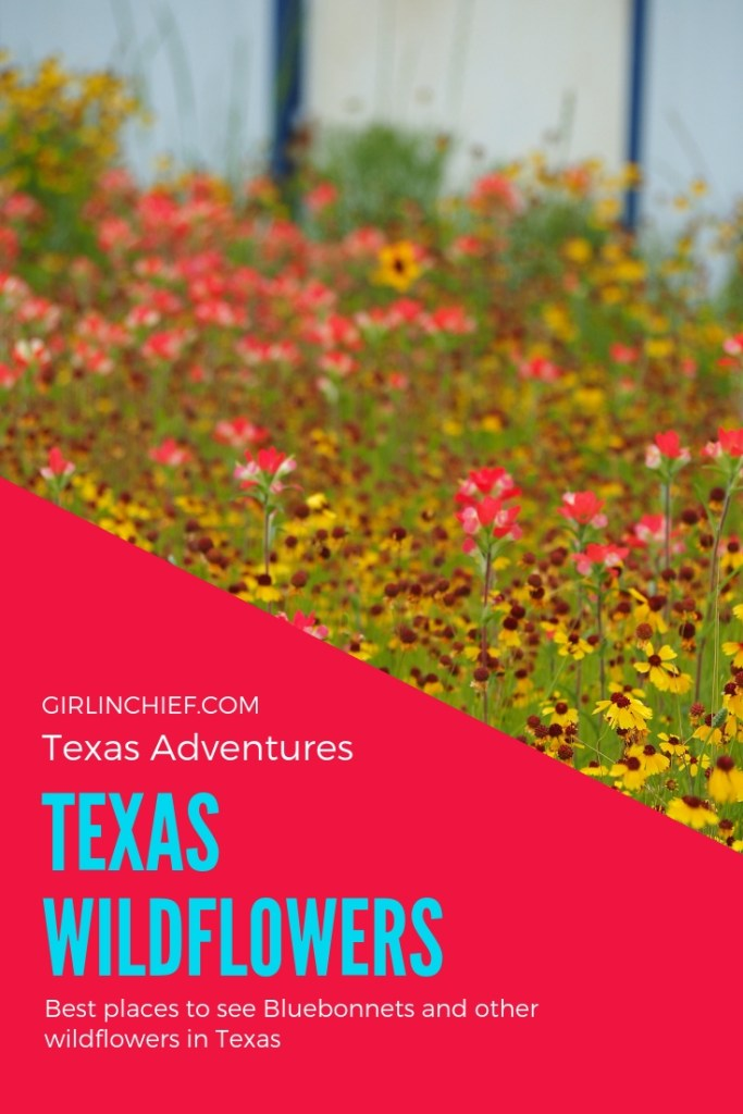 Texas Wildflowers: Best Places To See  #texaswildflowers #texashillcountry #texas #bluebonnets #spring