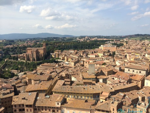 Sienna Rooftops