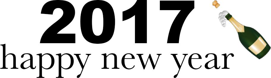 Blogging Coding Goals 2017