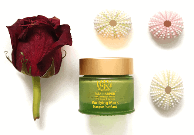 Tata Harper Purifying Mask Review