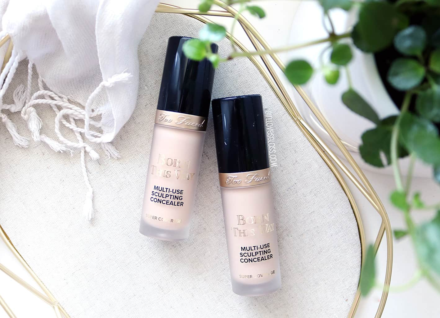 Too Faced Born This Way Super Coverage Multi Use Sculpting Concealer