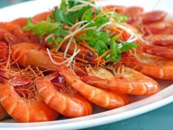 crevettes protéines