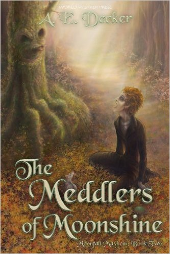 meddlers-of-moonshine book
