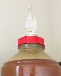 ビール造り 発酵