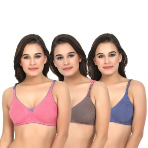 Women's Seamless Non Padded Non Wired Bra Pack of 3