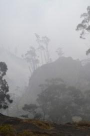 mountain mist, lombok, 08/14