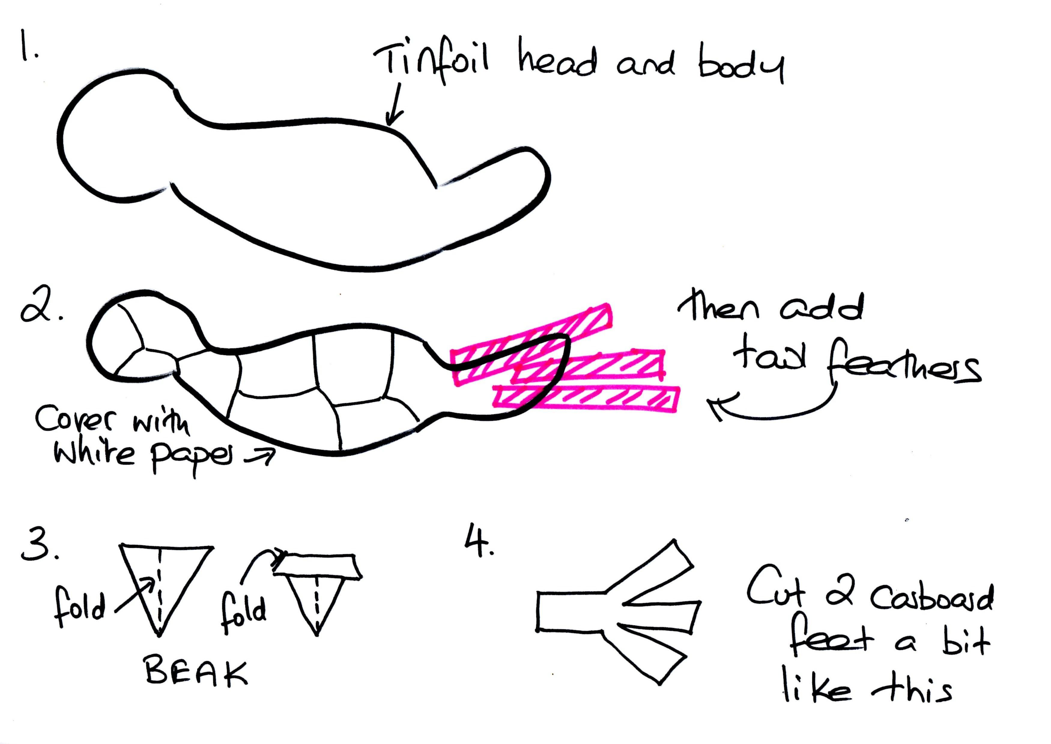Heart Diagram Sheet