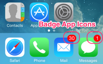 Badge Notifications on iOS