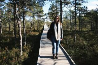 Lahemaa Nature Park