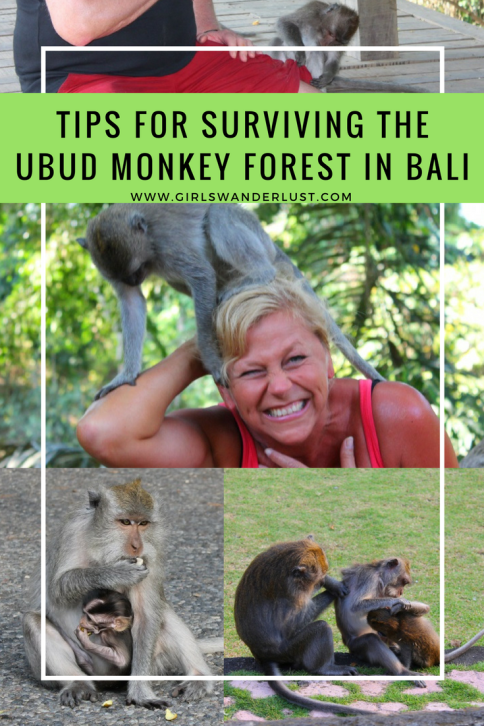 Tips for visiting and surviving the Ubud Monkey Forest in Bali, Pinterst