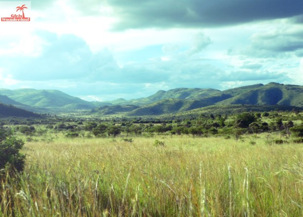 A visit to Pilanesberg National Park by @girlswanderlust #pilanesberg #southafrica #south #africa #girlswanderlust #safari #travel #travelblogger #nature #beautiful #view #landscape.jpg