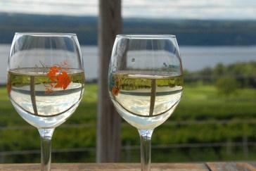 Atwater Vineyard