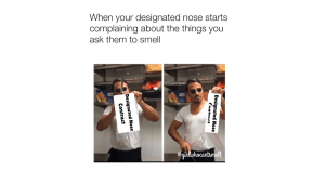 Designated Nose rebels anosmia meme for facebook
