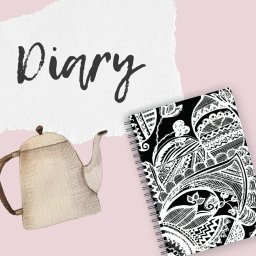 Girl Who Loves Pink! Diary