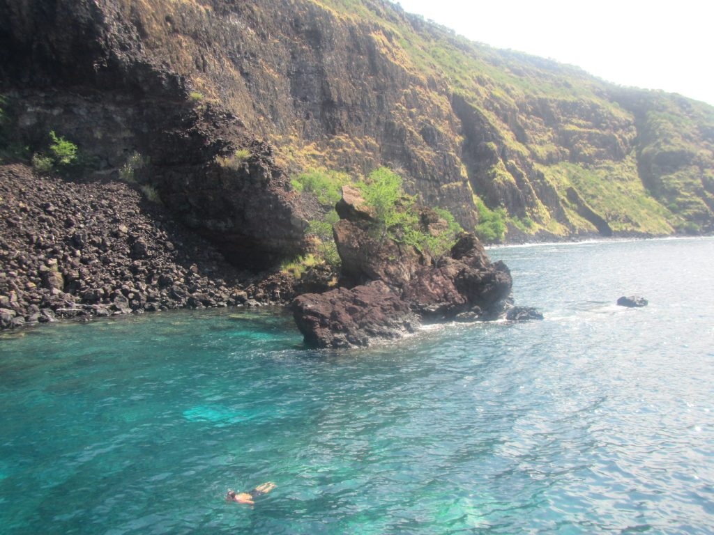 Snorkeling with Wild Dolphins Hawaii