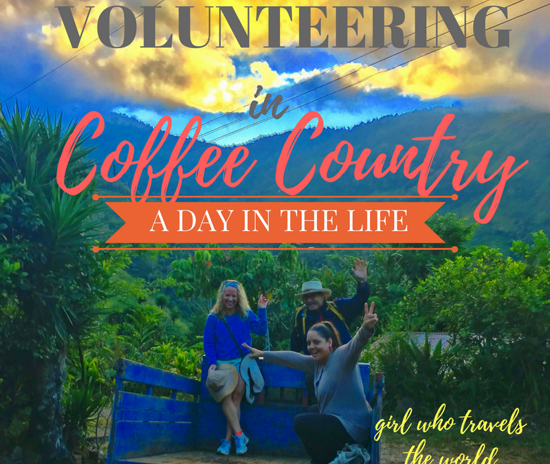 Volunteering on a Coffee Farm in Costa Rica!