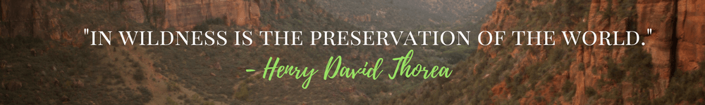 National Monuments, Thoreau Quote, Great Travel Quotes