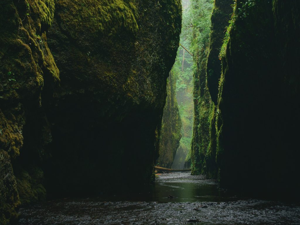 How to Get to Oneonta Gorge Hike, Girl Who Travels the World