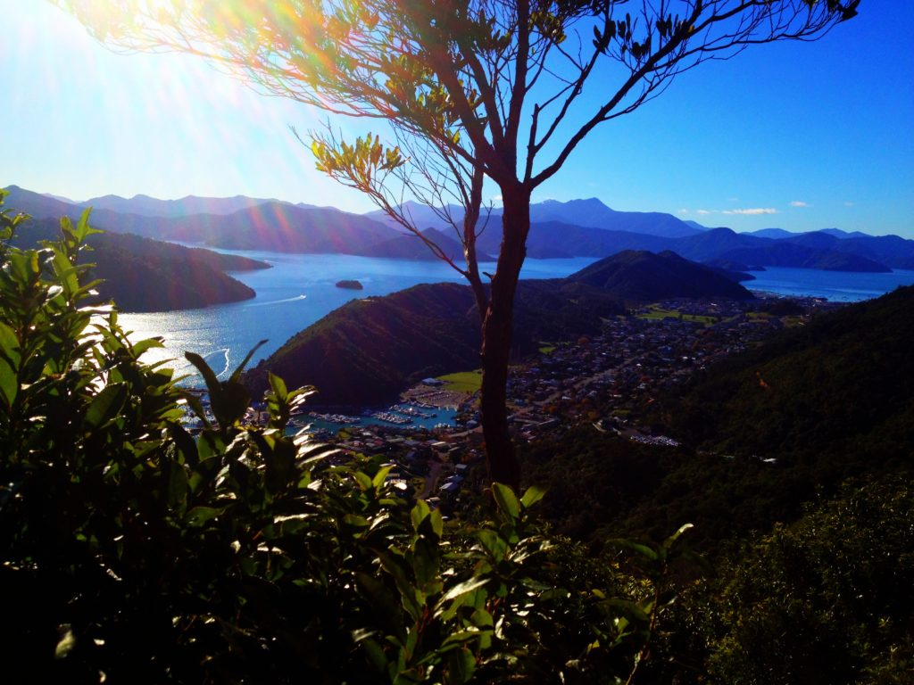 Ultimate Girl's Guide to New Zealand Travel, Girl Who Travels the World, Marlborough Sounds