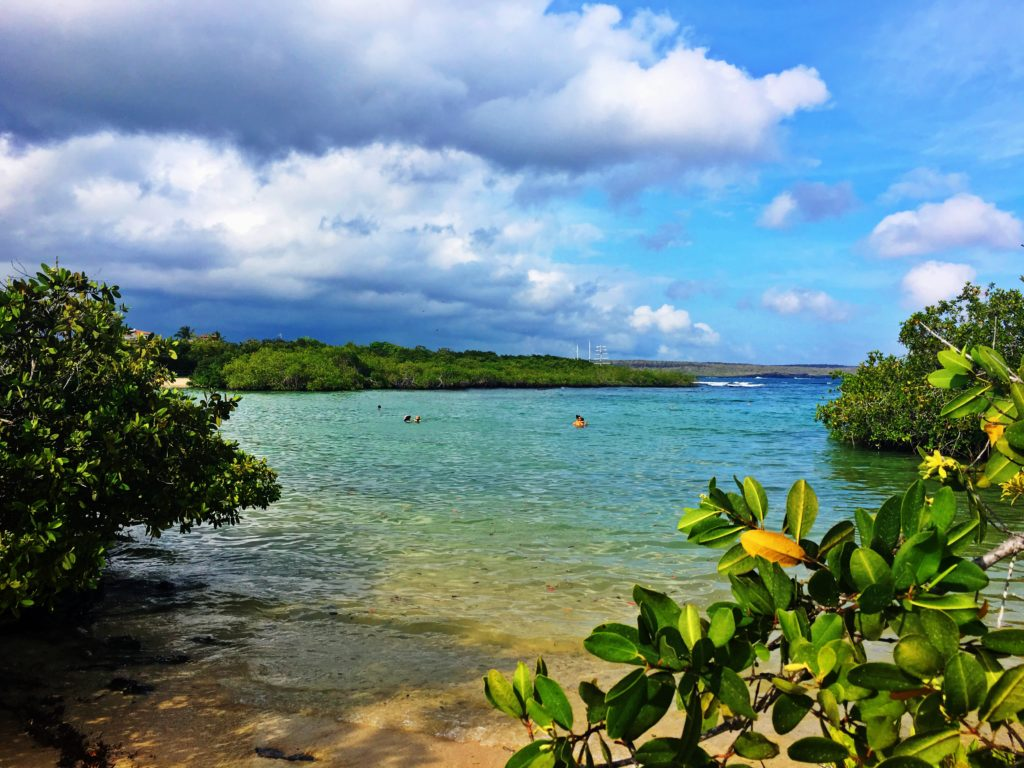 Ultimate Girl's Guide to Ecuador Travel, Best Things to Do in Puerto Ayora in the Galapagos Islands, Girl Who Travels the World