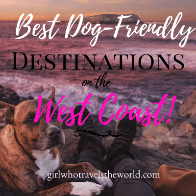 Best Dog-Friendly Destinations on the West Coast