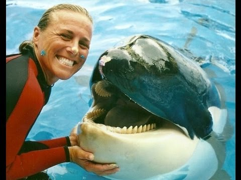 Why NOT to Swim with Dolphins in Mexico, Girl Who Travels the World, Dawn Brancheau