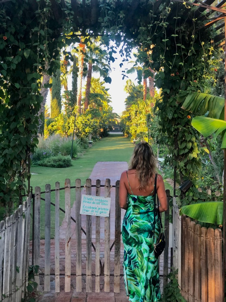 Directions to Flora Farms in Cabo, Girl Who Travels the World