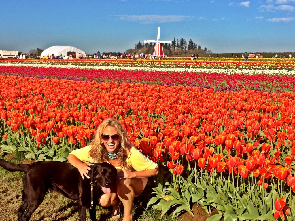 Guide to the Wooden Shoe Tulip Farm, Girl Who Travels the World