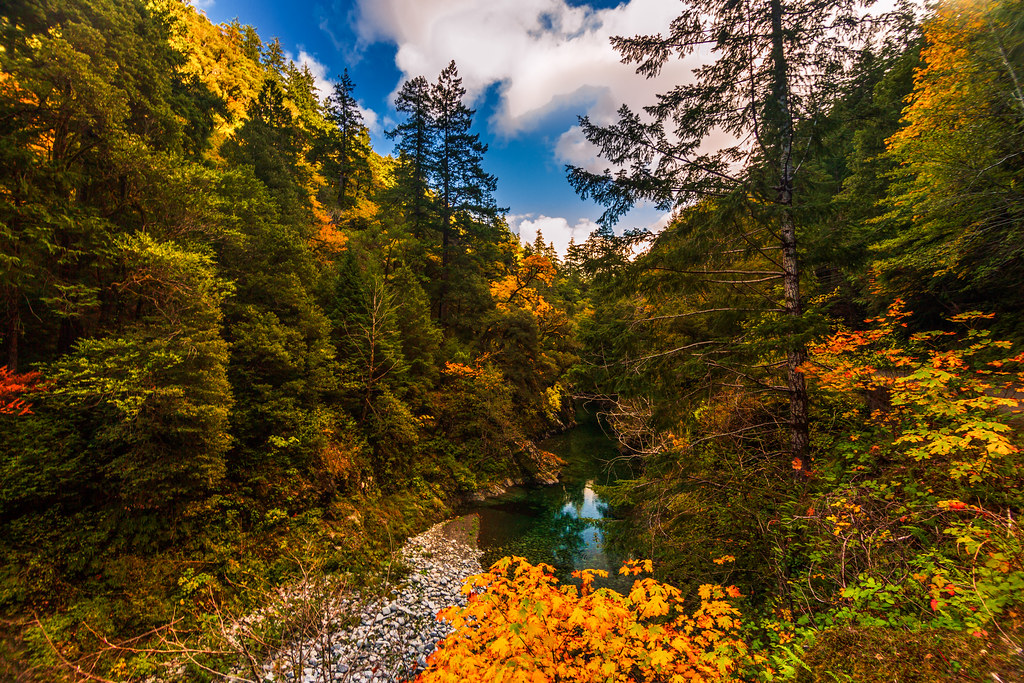 Best Spots for Finding Fall Color in Oregon, Girl Who Travels the World