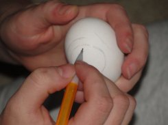 Most people start by drawing out base lines. This was more of a freehanded one, typically designs start by dividing the egg into four quarters.