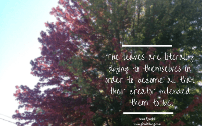 On Knowing What The Leaves Know